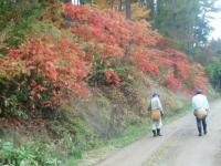 紅葉のなか松本増田H201025