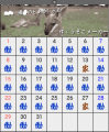 優ちゃんのカレンダー