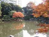 旧古川庭園2