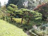 旧古川庭園3
