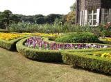 旧古川庭園5