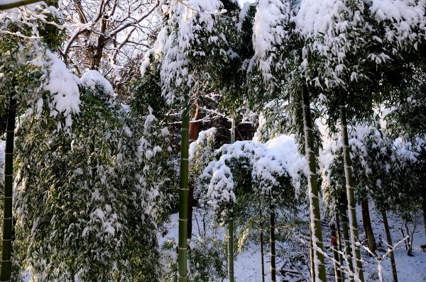 雪の両足寺他 075