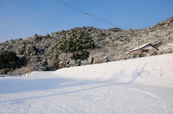 雪の両足寺他 051