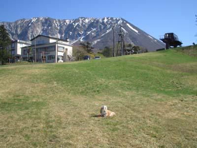 大山のスキー場