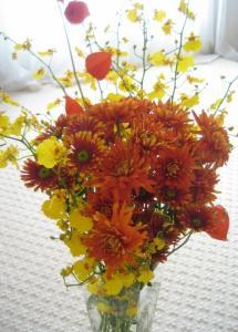 今月の花10.2008