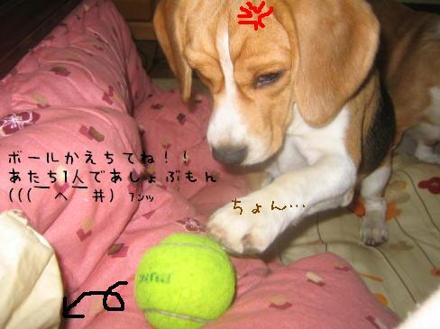 20060122133916.jpg