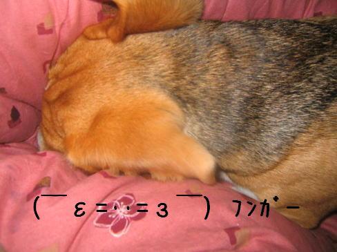 20060122134005.jpg