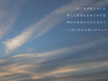P1010320.jpg