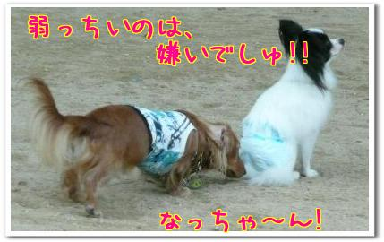 J__8IwvP.jpg