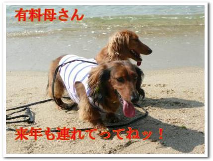 vDh__hBh.jpg