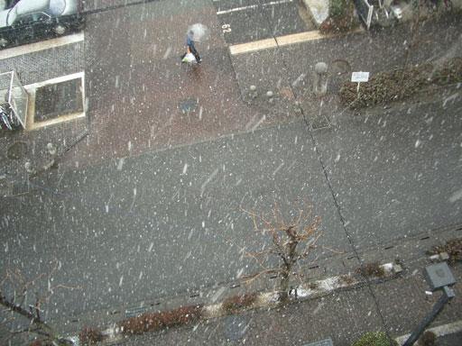 08・1・23初雪