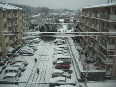 2月7日の雪