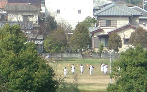 日曜の公園2
