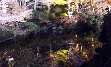 水にうつった木2