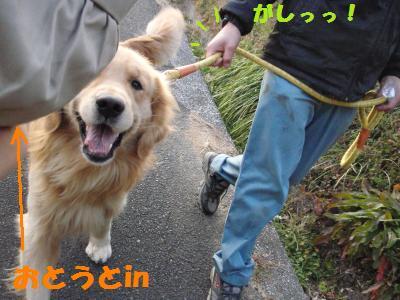018_convert_20091228134825[1]