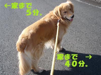 021_convert_20100124132932[1]