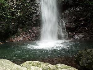 払沢の滝(夏)