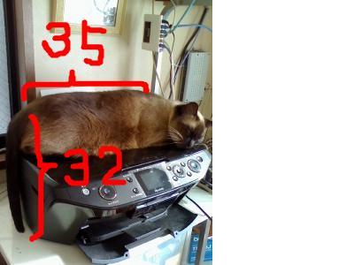 snap_chibitaseiko_20092203838_20100113232021.jpg