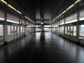 20050212_toukadai-komaki.jpg