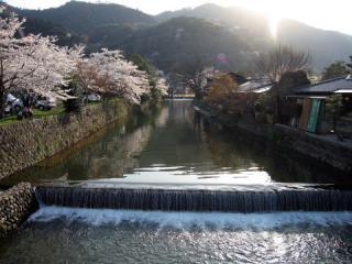 20050409_arashiyama-03.jpg