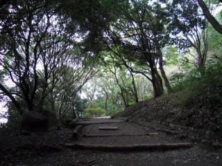 20051023_hiraoka-park.jpg