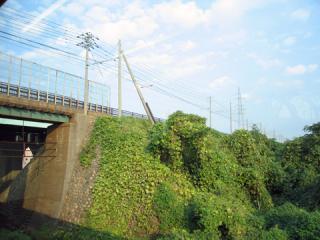20061104_himi_Line-01.jpg