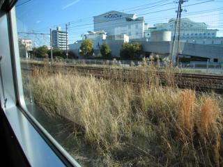 20070114_gantoku_line-02.jpg