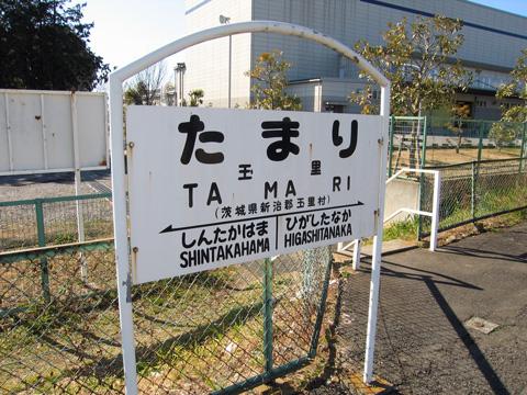 20070211_tamari-01.jpg