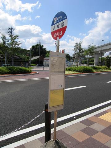20070722_yakusa-09.jpg