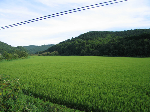 20070811_esashi_line-03.jpg