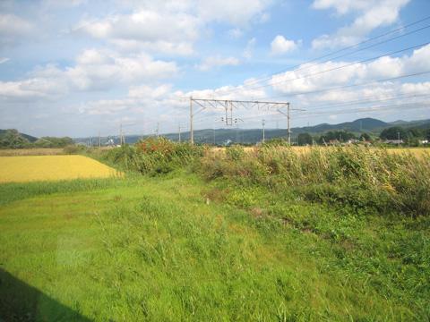 20071007_hanawa_line-01.jpg