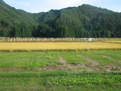 20071007_hanawa_line-05.jpg