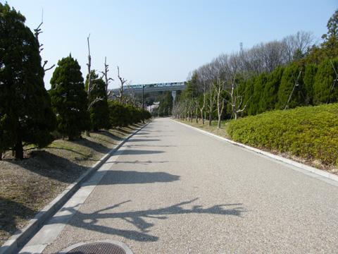 20080406_moricoro_park-44.jpg