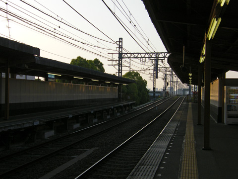 20080429_denpo-02.jpg