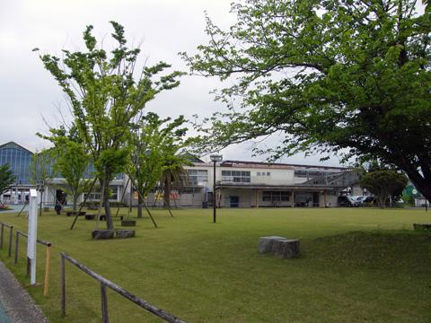 20080505_izumi-03.jpg