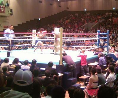 boxing0710293.jpg