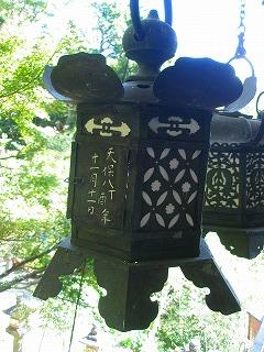 奈良 144