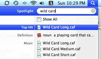 wildcard01.png