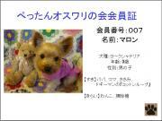 20071019233452.jpg
