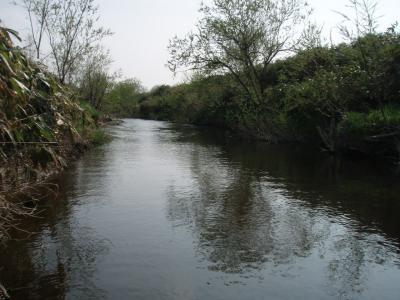 イトウ釣り場