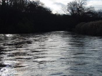 初冬の 川