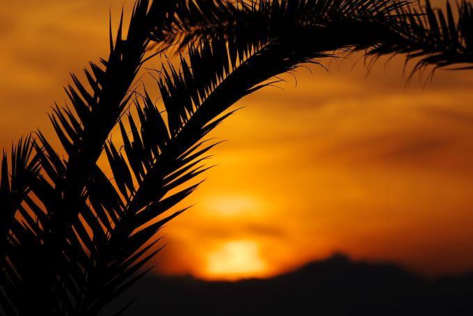 伊良湖で見た風景(シルエット)