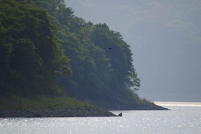 本栖湖風景