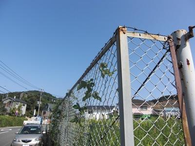 某敷地外柵フェンス改良