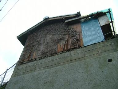 M山邸倉庫外壁補修