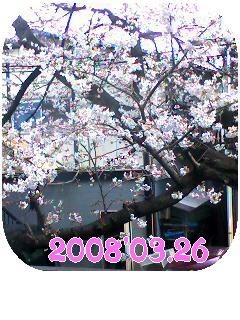 20080326