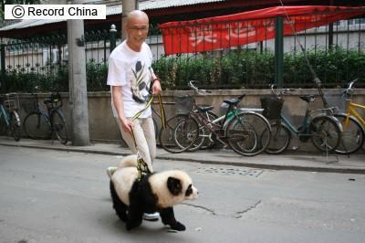 pandasanpo